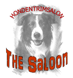 Hondentrimsalon The Saloon